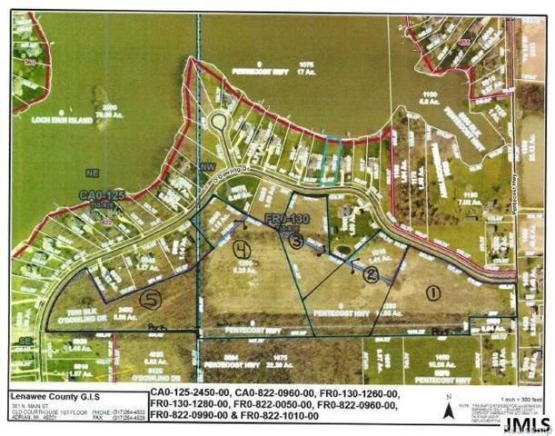 Odowling, Franklin, MI 49265 (#55201800990) :: Duneske Real Estate Advisors