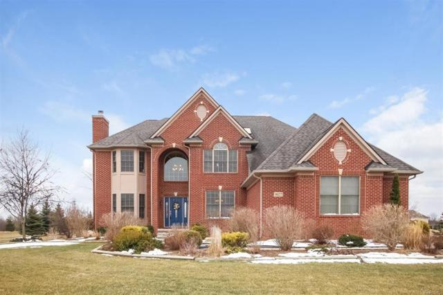 9027 Rogers Drive, York Twp., MI 48176 (#543255058) :: Duneske Real Estate Advisors