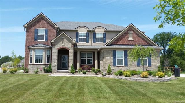 23631 Underwood Drive, Lyon Twp, MI 48178 (#218027157) :: Duneske Real Estate Advisors