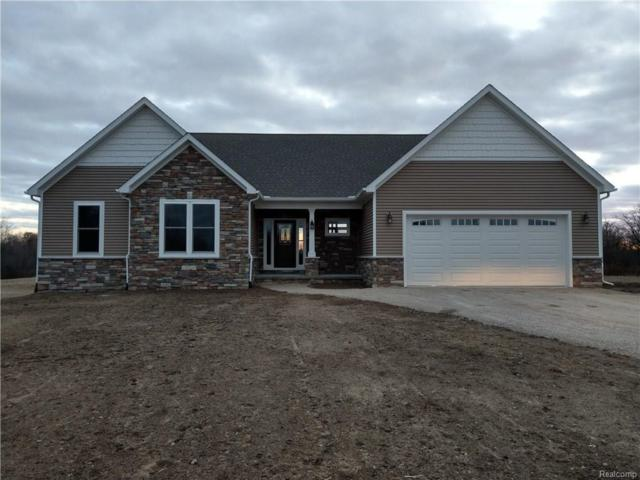 11173 Smiths Creek Road, Riley Twp, MI 48041 (MLS #218027414) :: The Toth Team