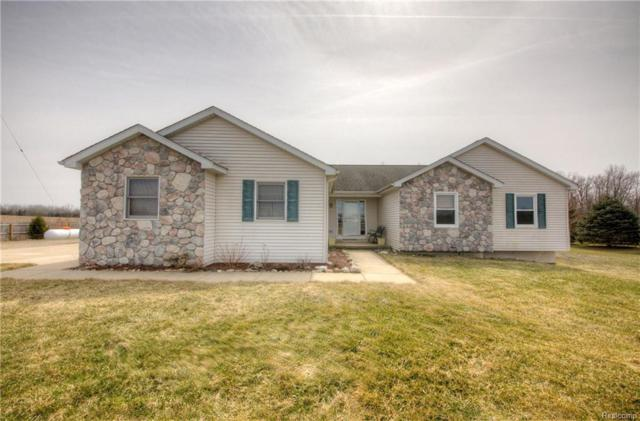 9901 Grant Road, Conway Twp, MI 48836 (MLS #218027739) :: The Toth Team