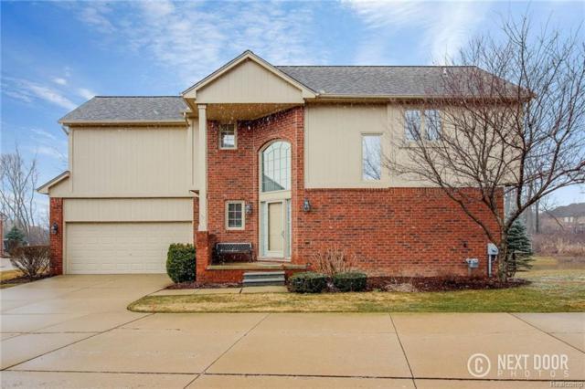 4183 Summer Pl, Shelby Twp, MI 48316 (#218027928) :: Duneske Real Estate Advisors