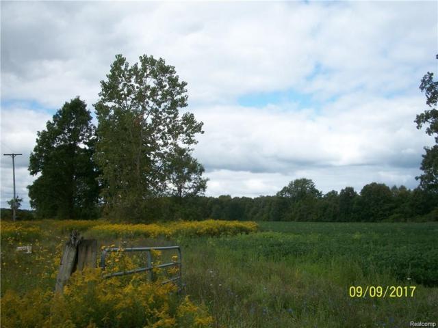 5475 Carney Road, Emmett Twp, MI 48022 (#218028689) :: The Buckley Jolley Real Estate Team