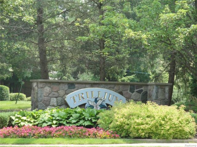 000 Hampstead Boulevard, Farmington Hills, MI 48331 (#218029451) :: The Buckley Jolley Real Estate Team
