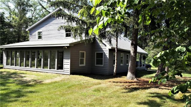 9173 Gould Road, Deerfield Twp, MI 48451 (#218029500) :: Duneske Real Estate Advisors
