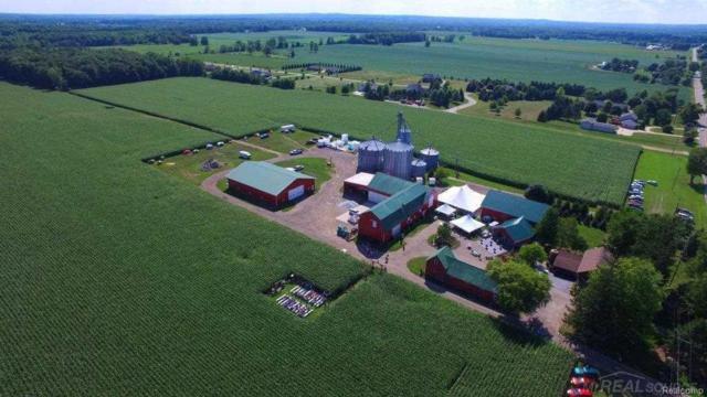 15943 Almont 136 Acre Farm, Berlin Twp, MI 48002 (MLS #58031344292) :: The Toth Team