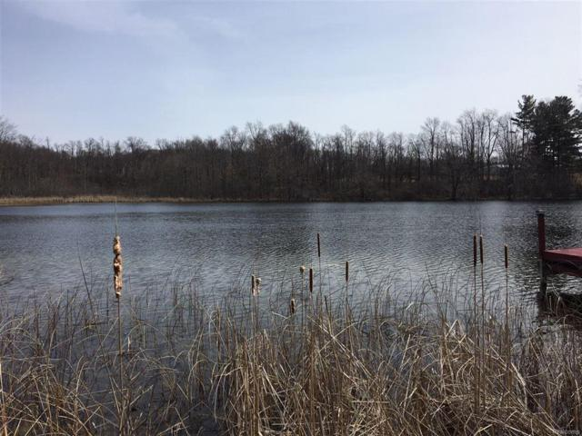 0 W Laneden, Holly Twp, MI 48442 (#50100001496) :: RE/MAX Vision