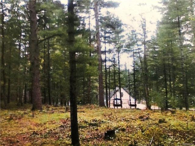 V/L Deer Run Trail, HAYES TWP, MI 49735 (MLS #218029987) :: The Toth Team