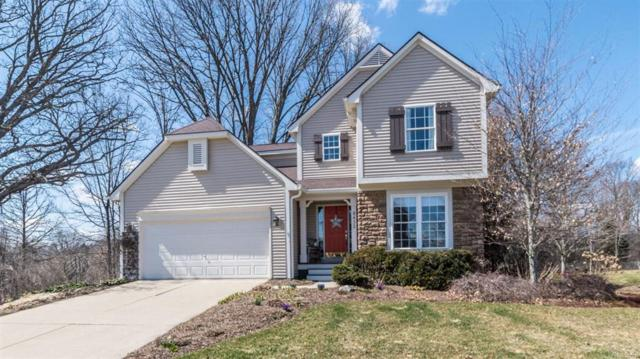 8432 Parkridge Drive, Dexter, MI 48130 (#543255744) :: Duneske Real Estate Advisors