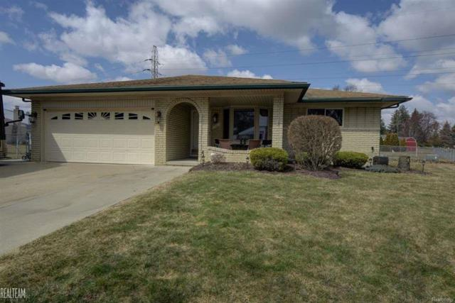 14527 Yale Ct., Sterling Heights, MI 48313 (MLS #58031344594) :: The Toth Team