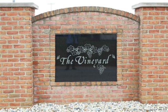 400 Deerfield Rd Blk, Deerfield, MI 49238 (MLS #56031344641) :: The Toth Team