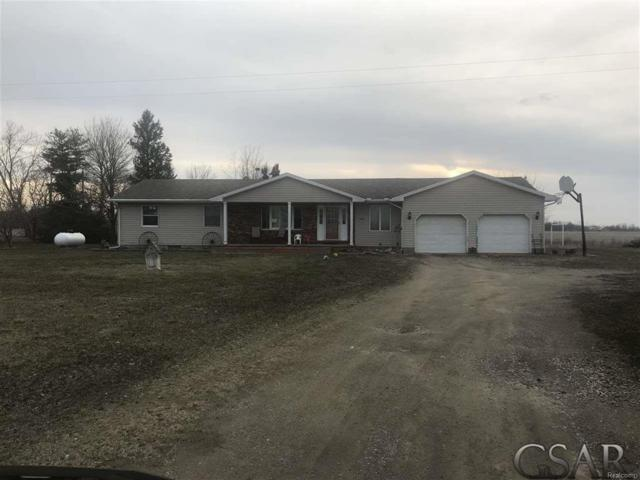 9300 W Epton, Fairfield Twp, MI 48831 (#60031344681) :: Duneske Real Estate Advisors