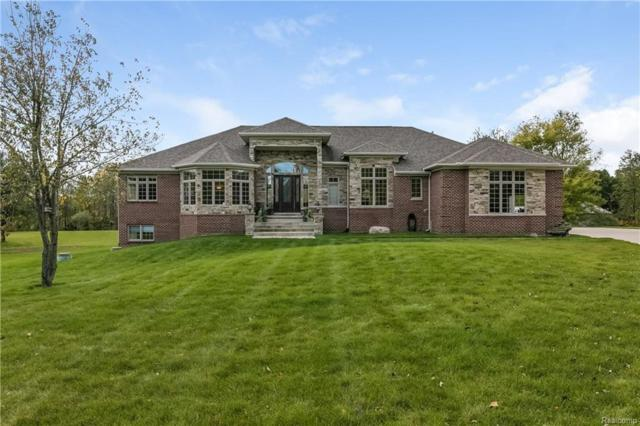 55205 8 MILE, Salem Twp, MI 48167 (MLS #218031262) :: The Toth Team