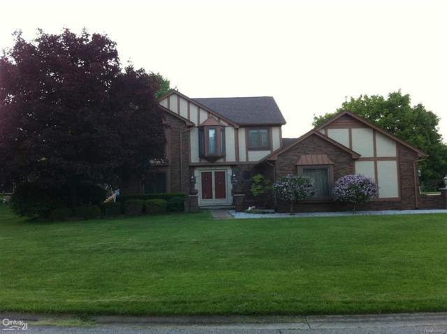 8771 Springwood Way, Washington Twp, MI 48094 (MLS #58031344752) :: The Toth Team