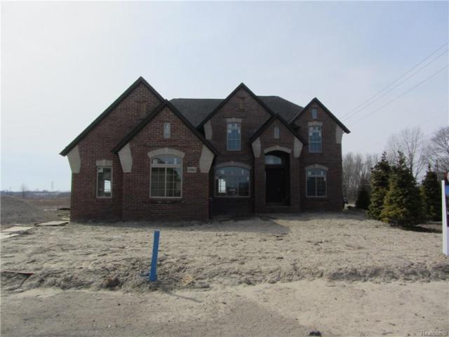 54647 Deadwood Lane, Shelby Twp, MI 48316 (#218031813) :: Duneske Real Estate Advisors