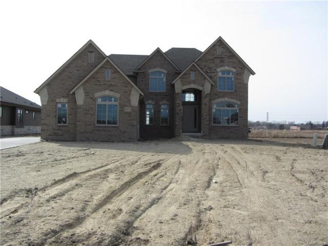 54773 Black Hills Lane, Shelby Twp, MI 48316 (#218031823) :: Duneske Real Estate Advisors