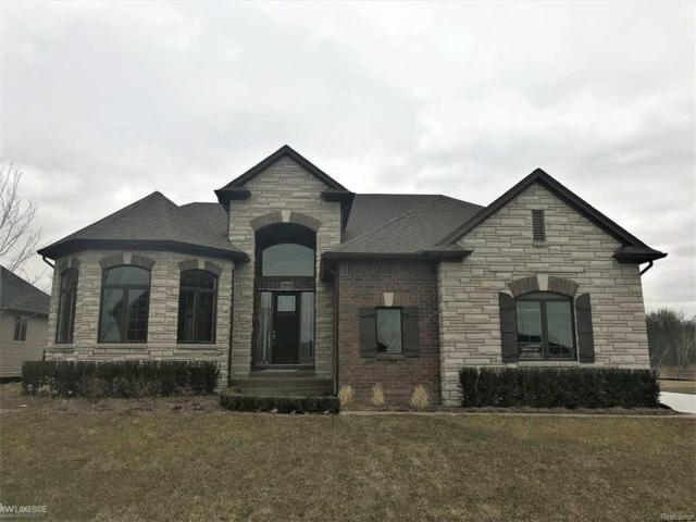 54630 Deadwood Lane, Shelby Twp, MI 48317 (MLS #58031344961) :: The Toth Team