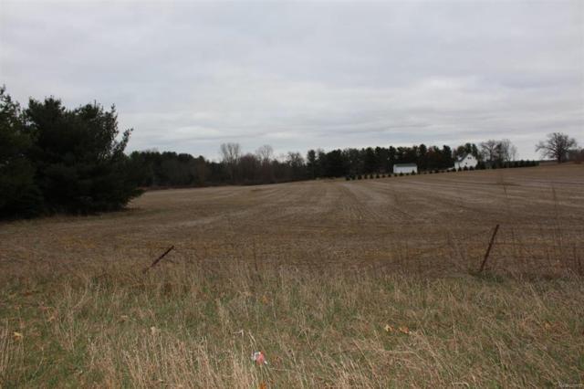 0 Curtis Road, Grass Lake Twp, MI 49240 (#543255914) :: Duneske Real Estate Advisors