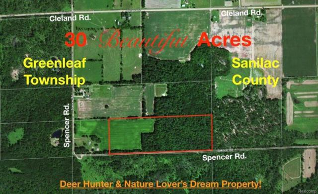 0 Spencer Road, Greenleaf Twp, MI 48475 (MLS #218032572) :: The Toth Team