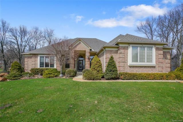 9523 Quail Ridge Run, Brighton Twp, MI 48114 (#218032654) :: The Mulvihill Group