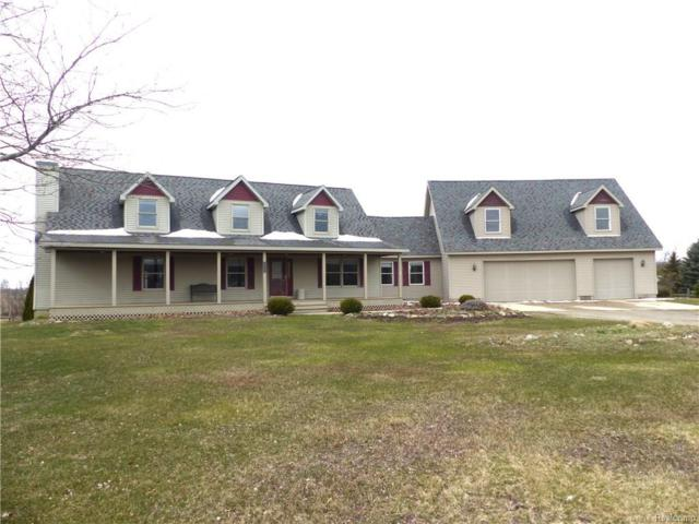8055 Northview Drive, Deerfield Twp, MI 48855 (#218032836) :: Duneske Real Estate Advisors