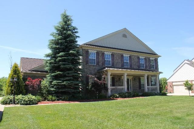 33 Oakbridge Drv, Rochester, MI 48306 (#218032838) :: The Buckley Jolley Real Estate Team