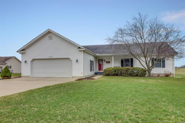 10285 Lee Road, Grass Lake Twp, MI 49240 (#543255864) :: Duneske Real Estate Advisors