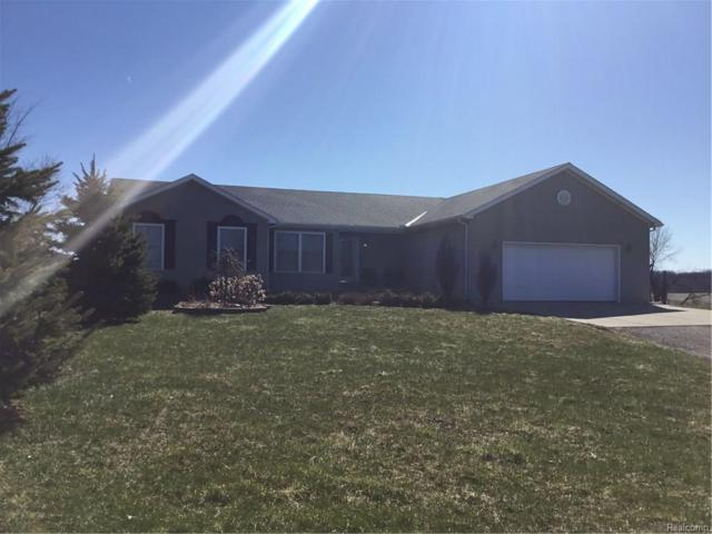 1632 N Lake Pleasant Road, Arcadia Twp, MI 48412 (#218033085) :: Duneske Real Estate Advisors
