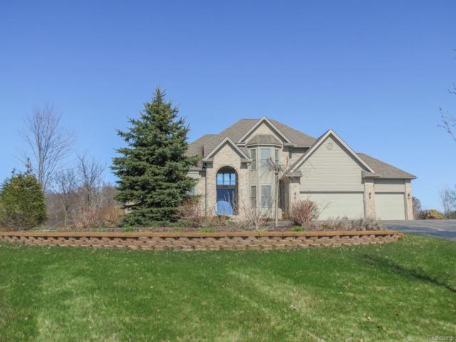 4466 White Pine Court, Ann Arbor, MI 48105 (#543255958) :: Duneske Real Estate Advisors