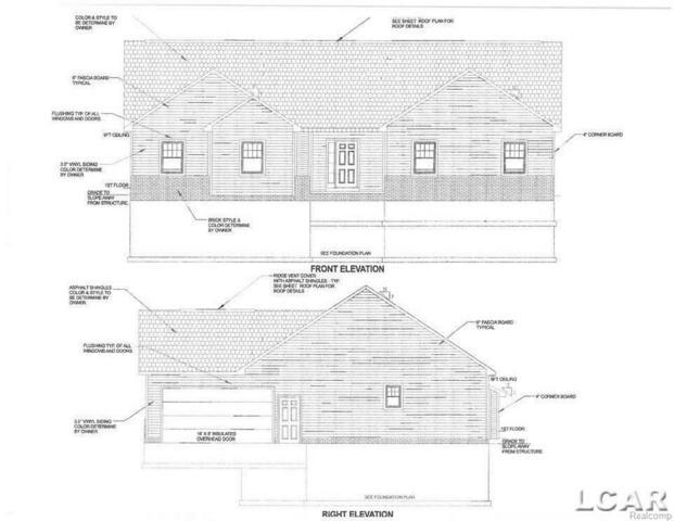 10380 Brookside Drive, Clinton Twp, MI 49286 (#56031345279) :: Duneske Real Estate Advisors