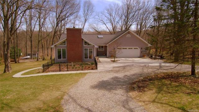 10415 Whitewood Meadows Lane, Hamburg Twp, MI 48169 (#218033699) :: The Mulvihill Group