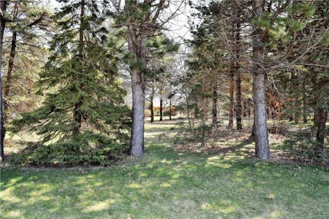 63900 Mound Road, Washington Twp, MI 48095 (#218033724) :: RE/MAX Vision