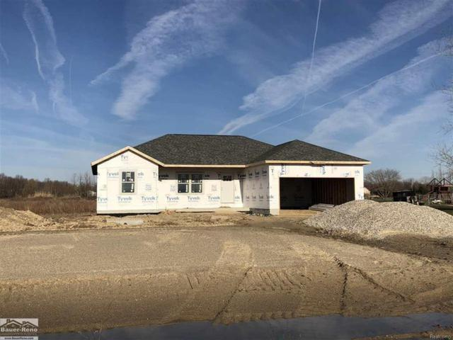 3657 Wadhams, Clyde Twp, MI 48049 (#58031345357) :: The Mulvihill Group
