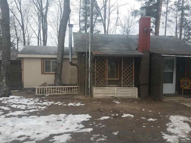 5342 Jerry Street, Sherman Twp, MI 48624 (#61031345368) :: Duneske Real Estate Advisors
