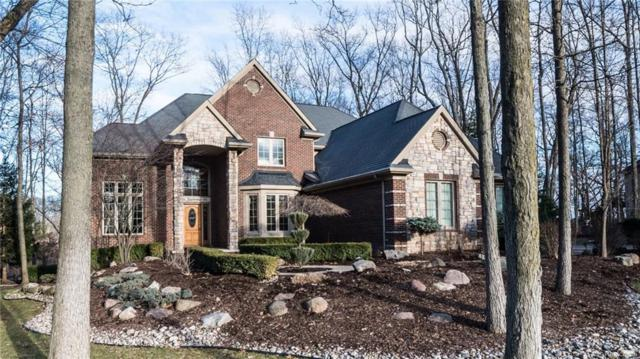 3565 Woodridge Drive, Genoa Twp, MI 48843 (#218033871) :: The Mulvihill Group