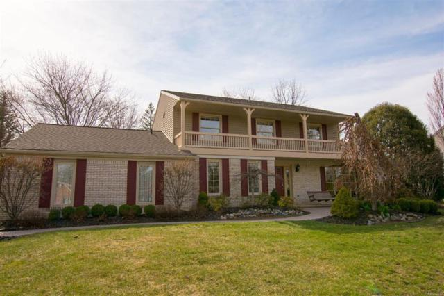 12425 Beacon Hill Drive, Plymouth Twp, MI 48170 (#543255872) :: Duneske Real Estate Advisors