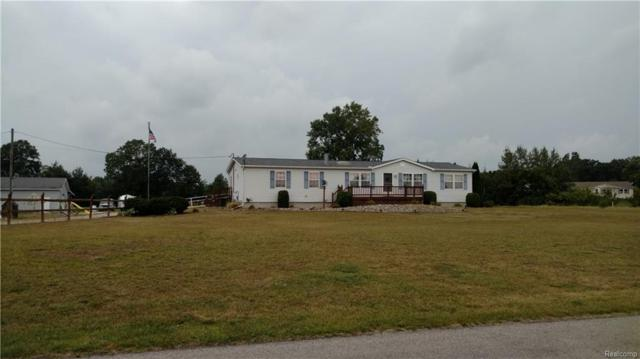 4042 S Secor Road W, Ida Twp, MI 49270 (#218034468) :: The Buckley Jolley Real Estate Team