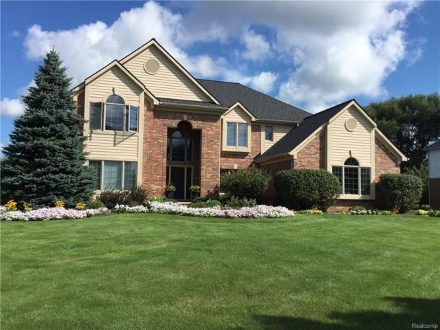 8440 Peaceful Valley, Springfield Twp, MI 48348 (MLS #218034504) :: The Toth Team