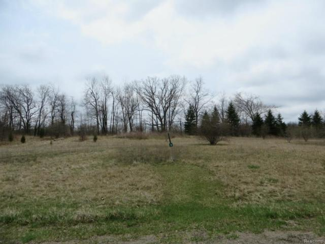 LOT 3 Stonewall, Independence Twp, MI 48348 (MLS #218036898) :: The Toth Team