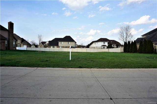 27190 Starkey Lane, Brownstown Twp, MI 48174 (#218037489) :: The Buckley Jolley Real Estate Team