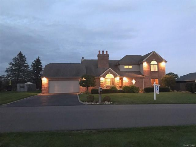 573 Tanview Drive, Oxford Twp, MI 48371 (MLS #218037651) :: The Toth Team
