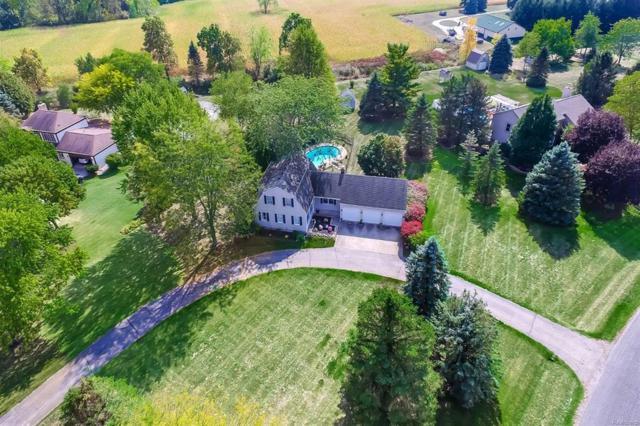 4059 Latchstring Court, Lodi, MI 48176 (#543256645) :: Duneske Real Estate Advisors