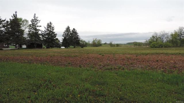 0 Lindemann Road, Lodi Twp, MI 48103 (#543256785) :: Duneske Real Estate Advisors
