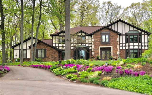 3972 Laplaya Lane, Orchard Lake, MI 48324 (#218042026) :: The Buckley Jolley Real Estate Team
