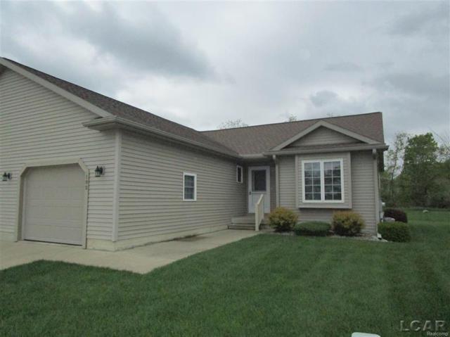 182 Trevor Trail, Onsted, MI 49265 (#56031347655) :: Duneske Real Estate Advisors