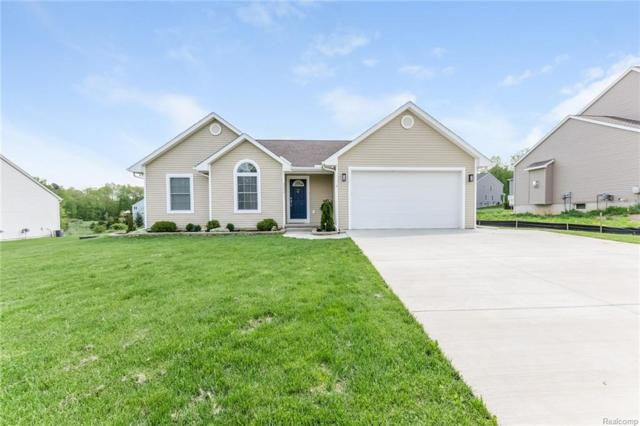 5572 Seney Circle N, Hamburg Twp, MI 48189 (#218042789) :: The Buckley Jolley Real Estate Team