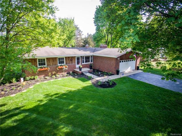 8761 Wise Rd, Commerce Twp, MI 48382 (#218043049) :: RE/MAX Classic