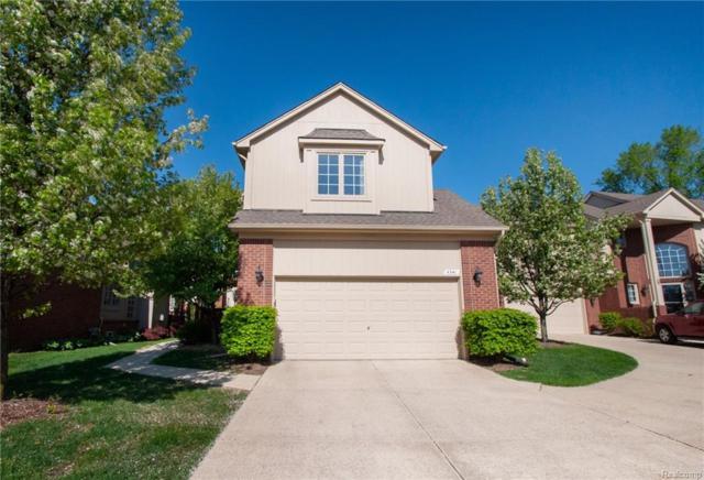 4341 Summer Pl, Shelby Twp, MI 48316 (#218043059) :: Duneske Real Estate Advisors