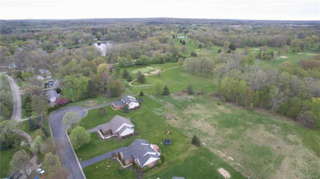 00 Maxfield Road, Hartland Twp, MI 48353 (#218043090) :: The Buckley Jolley Real Estate Team