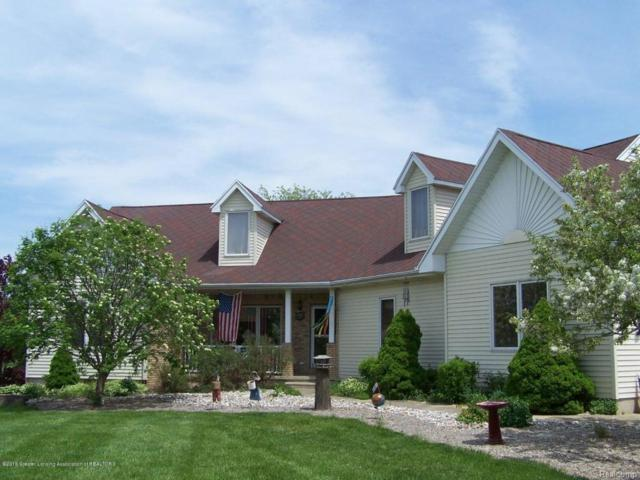 8219 S Clinton Trail, Hamlin Twp, MI 48827 (#630000226306) :: Duneske Real Estate Advisors